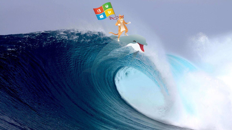 Ninja Cat Microsoft
